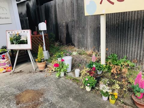 春の花へ植え替え