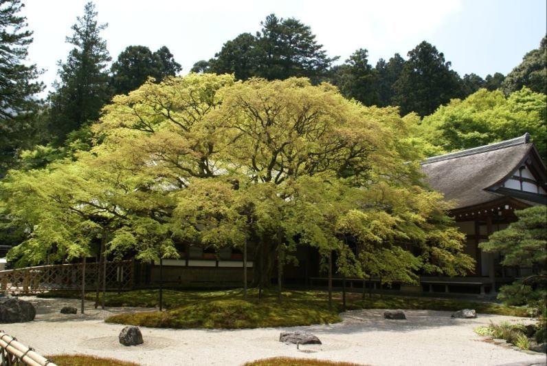 千如寺・雷山(福岡県)
