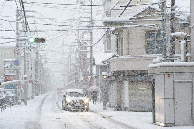 珍しい・・南国高知での積雪~。