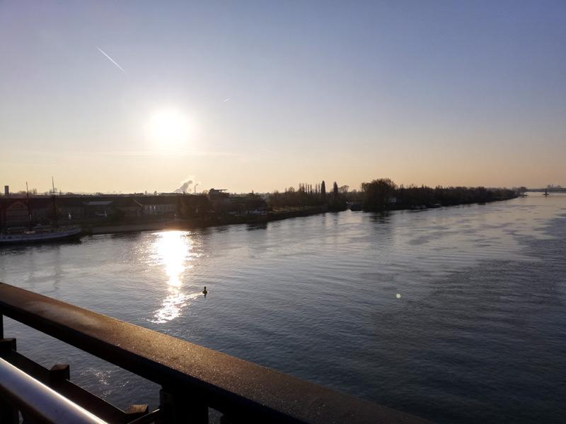 Wunderschöner Blick auf Mainz