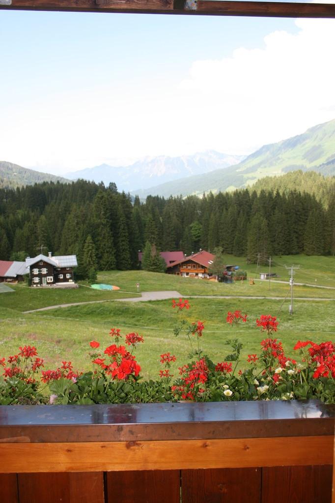 Die Aussicht aus Ferienwohnung 4 zum Nebelhorn