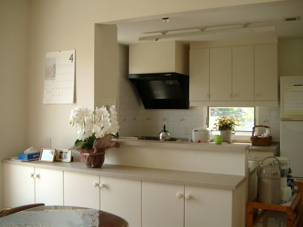 Hさんの家(市川市)キッチン2