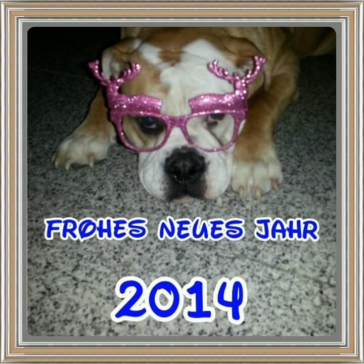 Alf wünscht euch allen ein gesundes neues Jahr