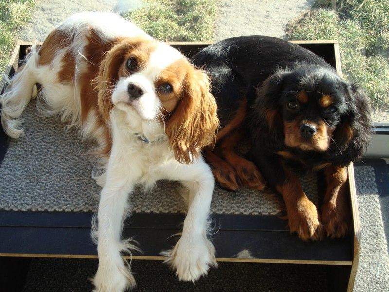 Keira und Ginny