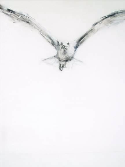 """VENDIDO. Carmen Moreno. """"Gaviota en un mundo nuevo"""", 100 x 81 cm., oil on canvas."""