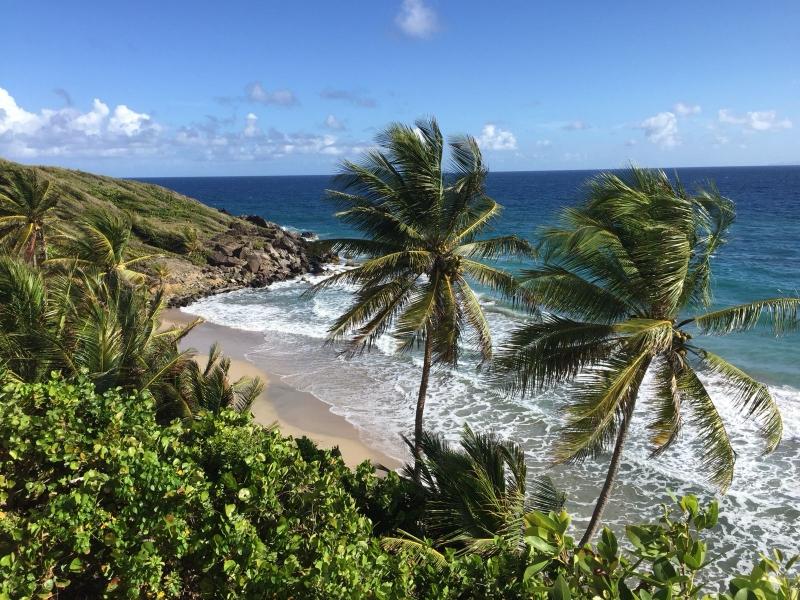Nord Ost Küste von Grenada