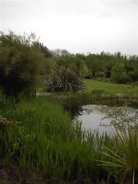 Gartocharn Garden - Mhairi Auld
