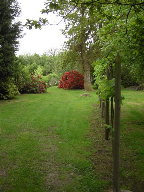 Walkways in the garden