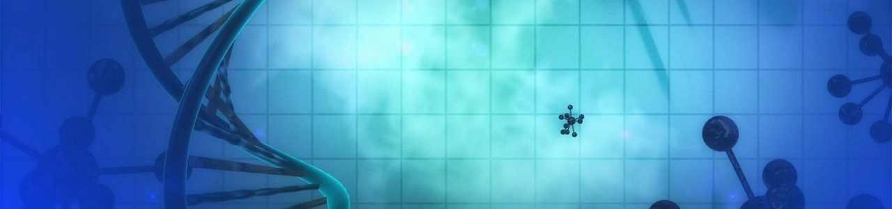Naturheilpraxis Juliette Gabriele – Heilpraktikerin in Düsseldorf, Naturheilkunde, Homöopathie,, Darmsanierung,Ernährungsberatung, Gefäßtherapie,Entgiftung,Lichttherapie,Photonentherapie,Säure Haushalt,Basen,Regulation, Alternative Medizin