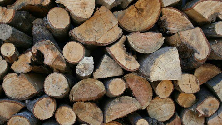 Black Wattle Wood For Sale Firewoodafrica