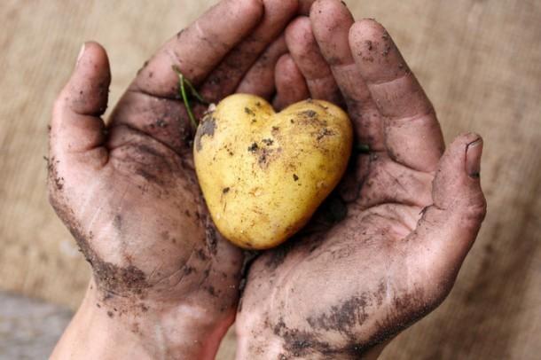 Nachhaltiger Garten- und Landbau