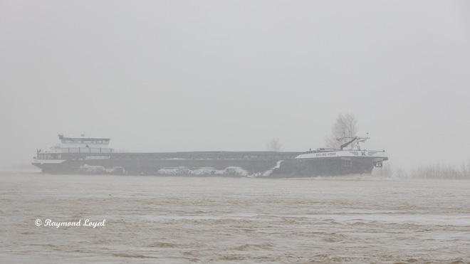 schiff rhein fluss wasser regen nebel landschaft