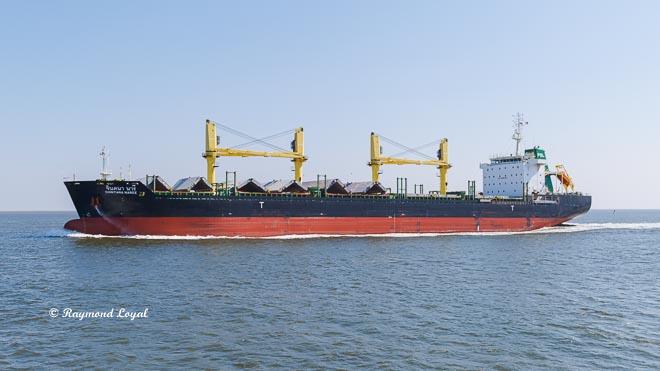 cargo shipl northsea
