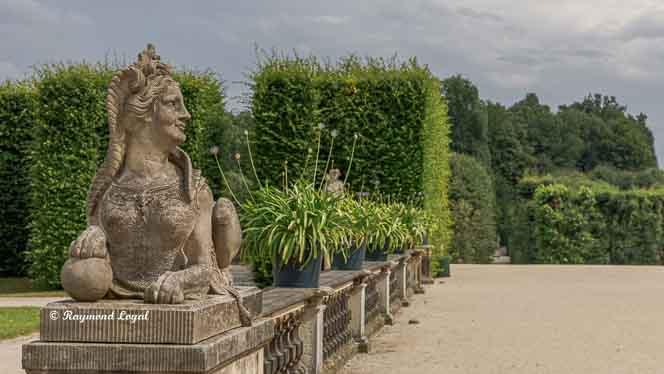 barockgarten grosssedlitz sphinx