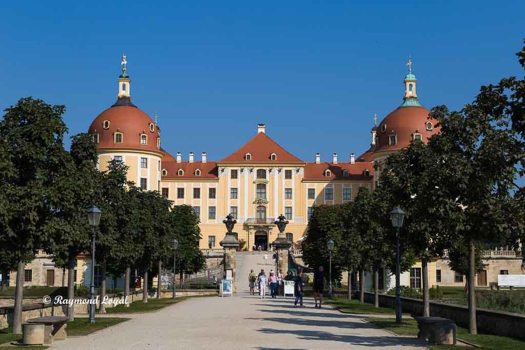 avenue to moritzburg palace