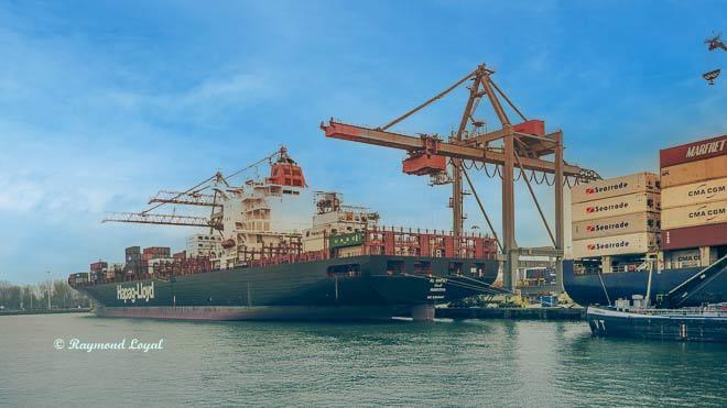 rotterdam waalhaven schiffe und containerbruecken