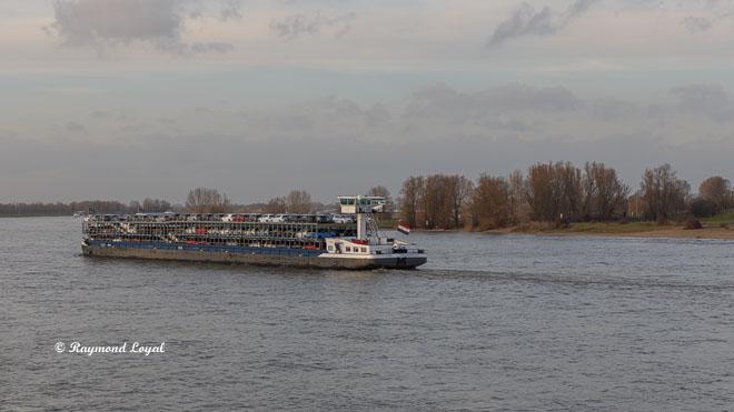 cart transporter barge on the rhine