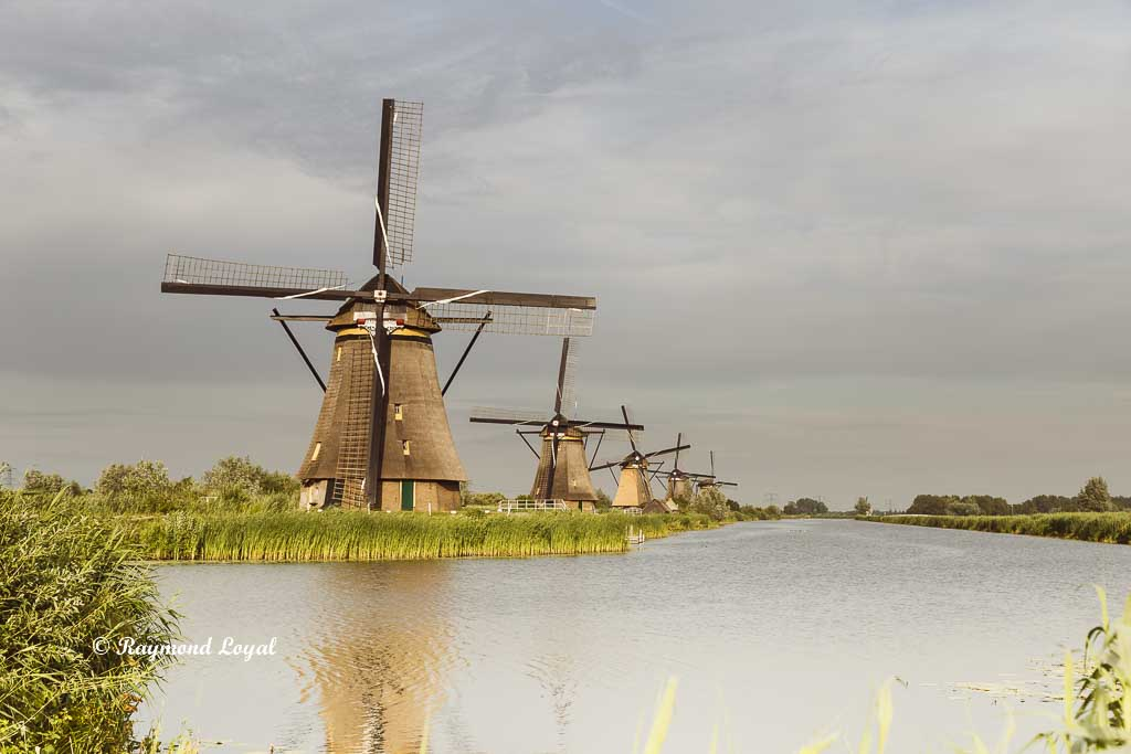 kinderdijk windmills images