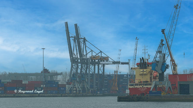 rotterdam waalhaven container bridges and ships