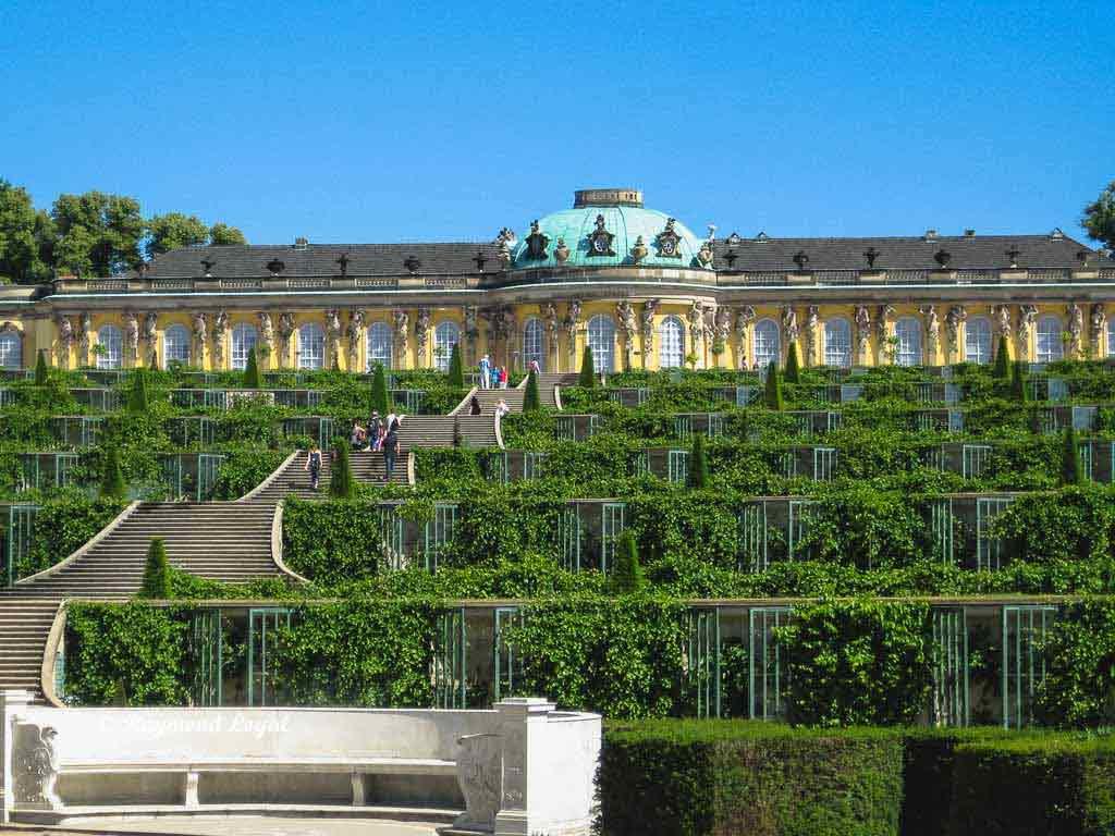 sanssouci palace potsdam vineyard terraces