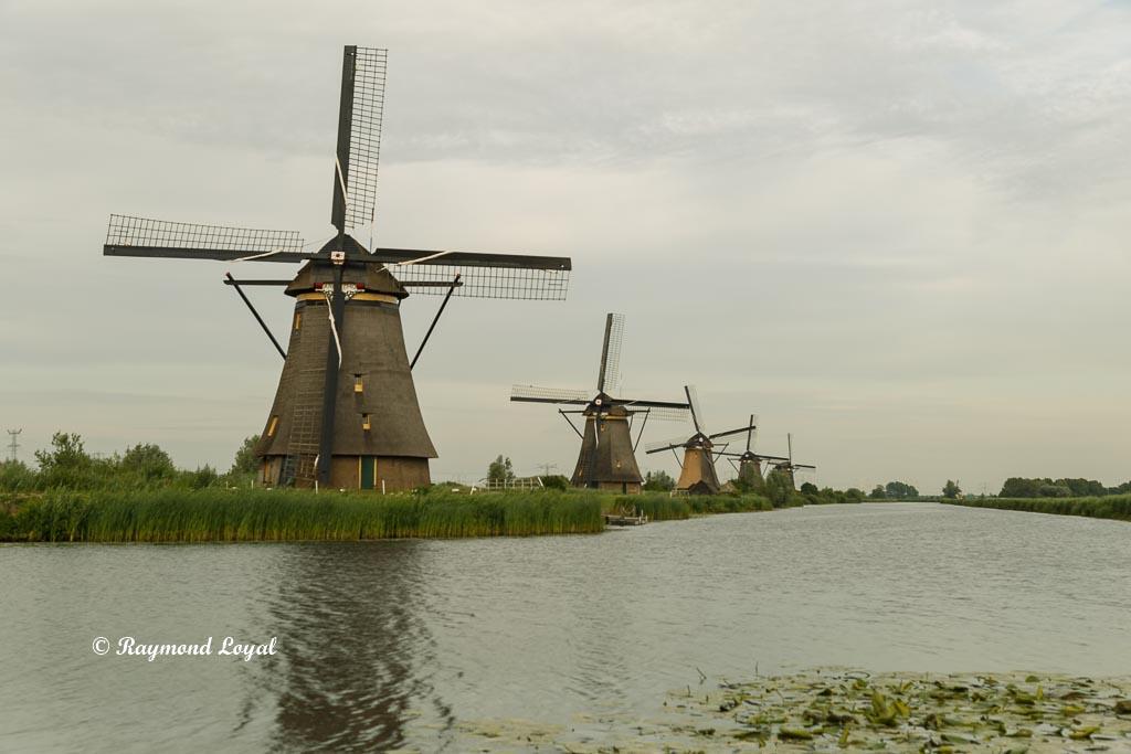 kinderdijk windmills holland image