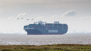 Seeschiff Containerschiff Elbe