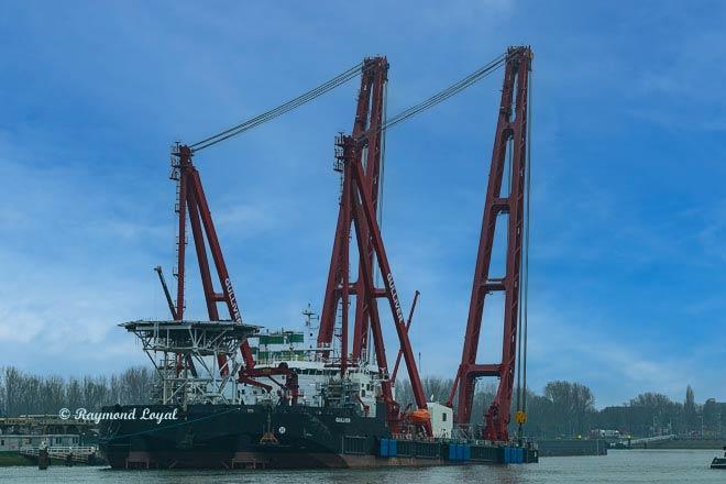 floating crane at rotterdam waalhaven