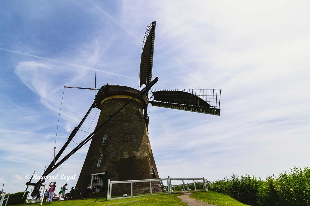 kinderdijk windmill image