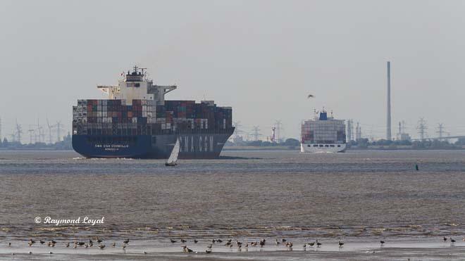 container ship river elbe voyage
