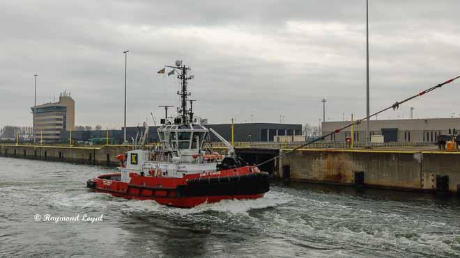 tug zeebrugge port