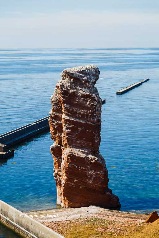 helgoland nature images
