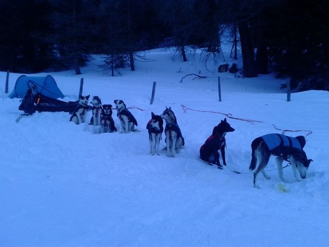 Einrichten für das Biwak, auf einer steilen Lichtung mit tiefem Schnee, macht alles wirklich einfach...