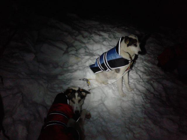 Penny und Charlize im Biwak.