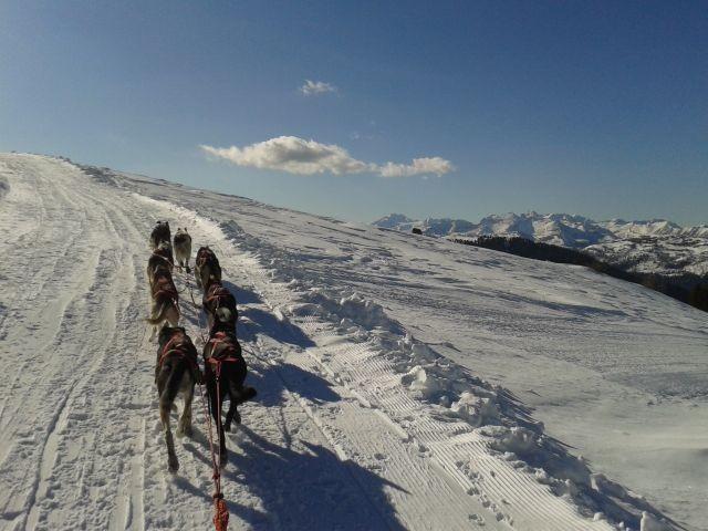 Steiler Aufstieg und schöne Aussicht; hier kann ich es noch geniessen, die Hunde machen alles alleine!