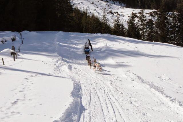 Im steilen Abhang Richtung Ziel spritzt der Schnee von der Bügelbremse direkt ins Gesicht.