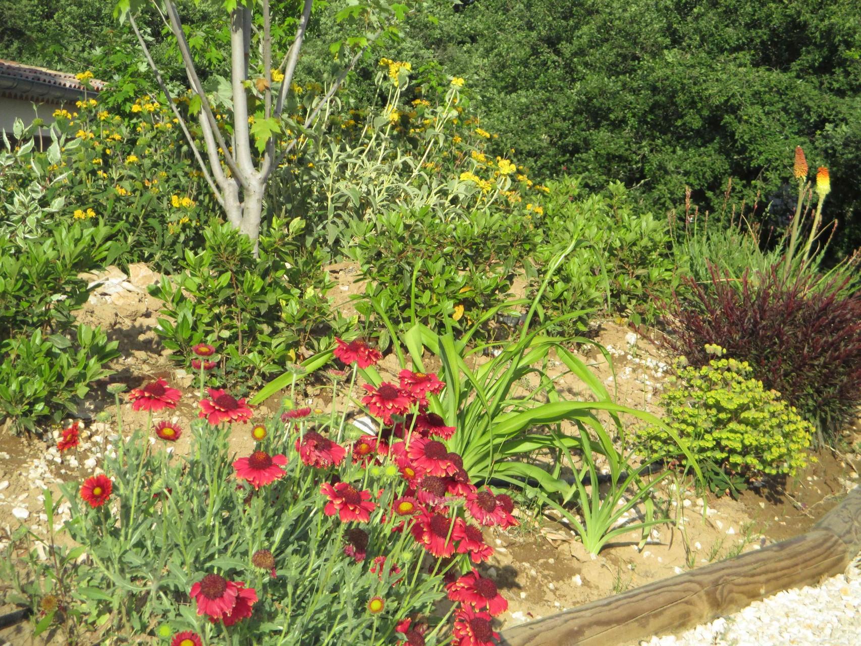 Le jardin du Mas de Molines à Vogüé