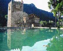 Valle de la Murta, situado en Alzira a 51 kilómetros de la ciudad de Valencia.