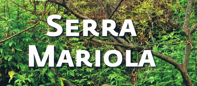 El parque natural de la Sierra de Mariola con más de 1.200 especies vegetales contabilizadas.