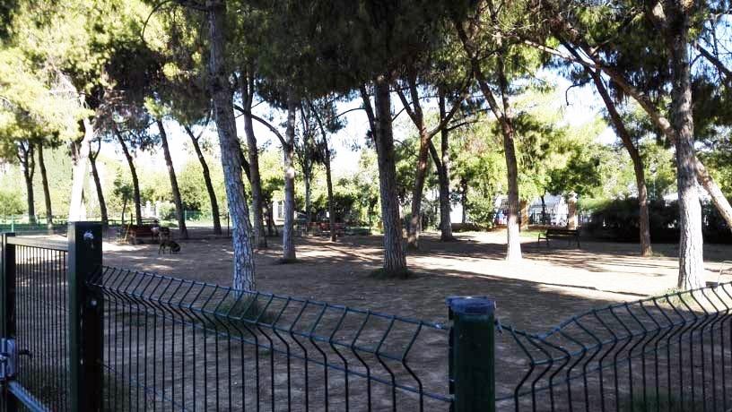 Una de las numerosas zonas acondicionadas para los animales, hay en todos los parques, jardines y barrios de València.