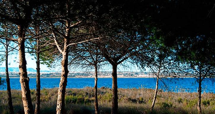Las Lagunas de Mata y Torrevieja- Alicante