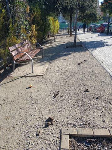 Jardines llenos de excrementos y que los dueños de las  mascotas  en la Ciudad de València no recogen.