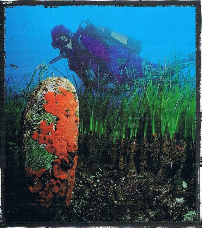 Portada de la Isla de Tabarca del fascísculo  nº 4 del año 1998 del diario Las provincias (Comunitat Valenciana).