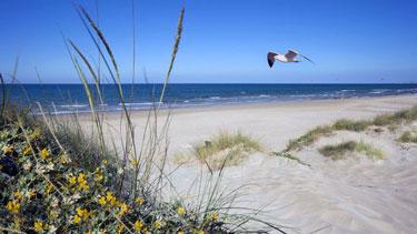 La playa del agua blanca se encuentra en al desembocadura del río bullent de Oliva en la Comunidad Valenciana España.