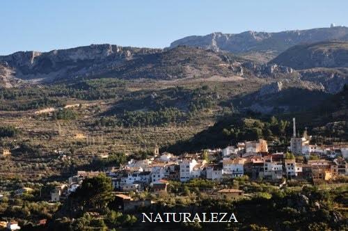 En la  Comunidad Valenciana,  tenemos numerosos Parques Naturales Protegidos y reservas marinas. Está llena de bosques y parajes pr.eciosos