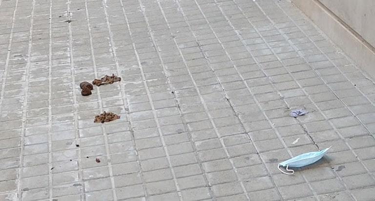 Un ejemplo de los   impresentables que no recogen las heces  de sus mascotas  en la Ciudad de València.
