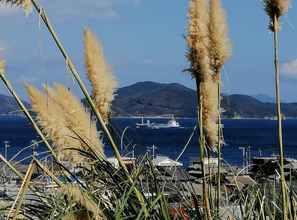 Geplanter Bau des AKW Kaminoseki: Fischer von Iwaishima verhindern Bohrungsarbeiten auf See