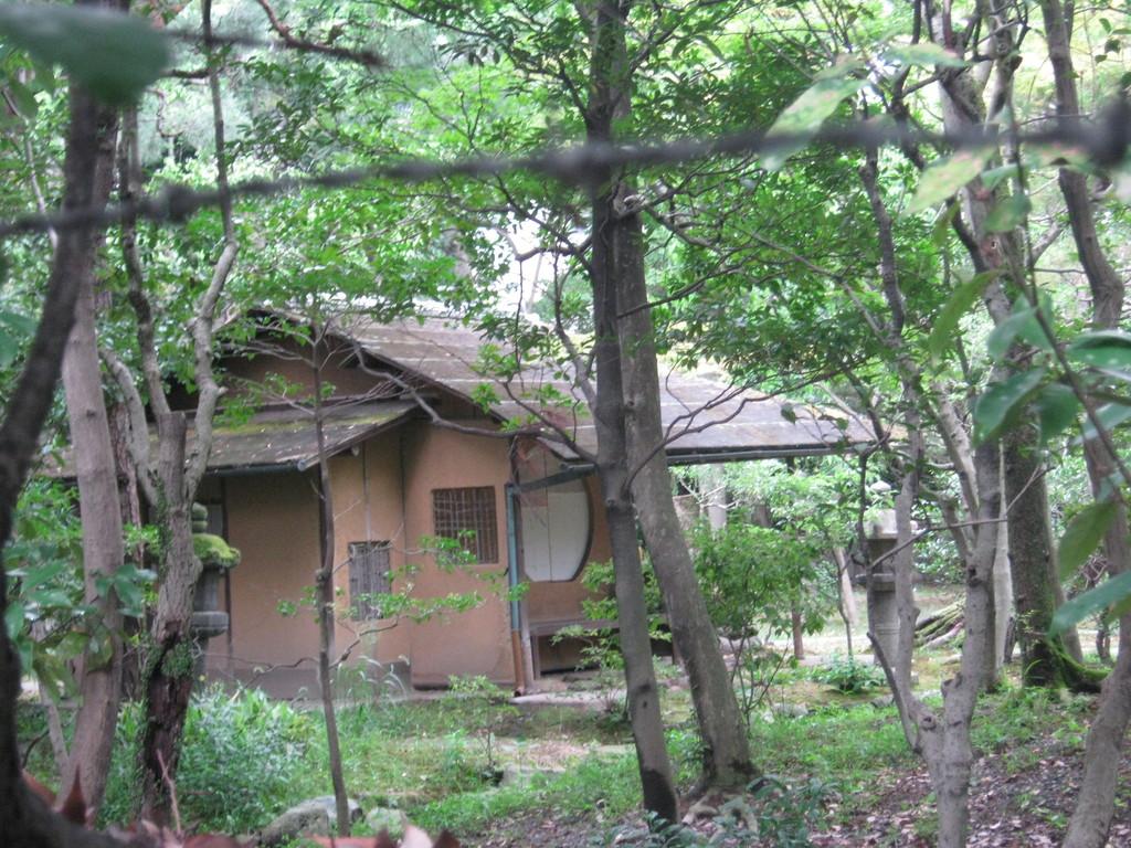 中の建物を撮ってはみたのですが。inside of Seifuso villa