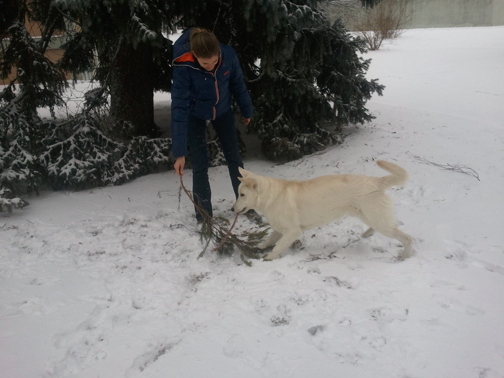 El Lobo of the White Heaven Januar 2012