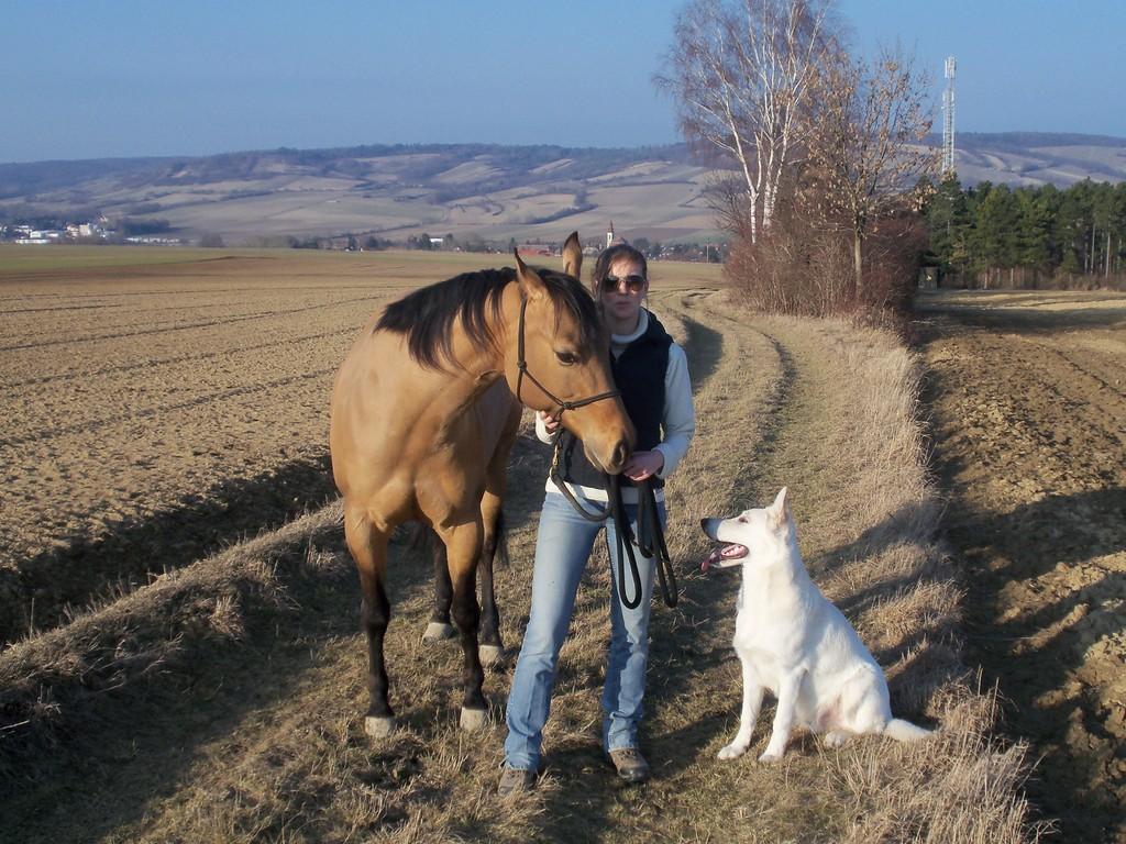 Donna Tucker Chex , Beatrix & El Lobo of the White Heaven März 2012