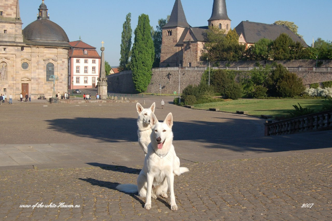 Evita & Celin vor dem Dom in Fulda